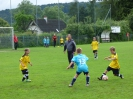 16.06.2016 - Kreisjugendspiele E-Junioren