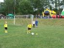 21.06.2014 - 20. Kreisjugendspiele Fußball